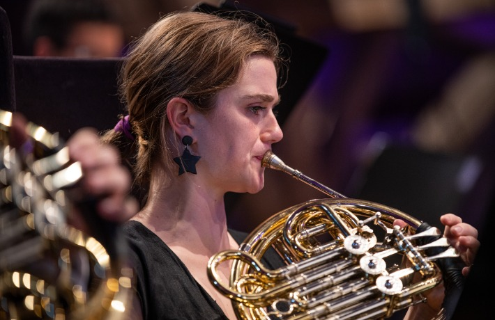 French Horn Stolpe