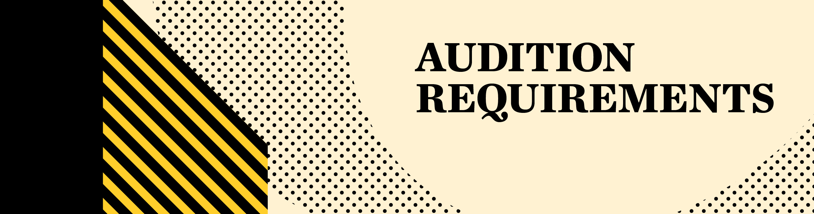 Audition requirements banner