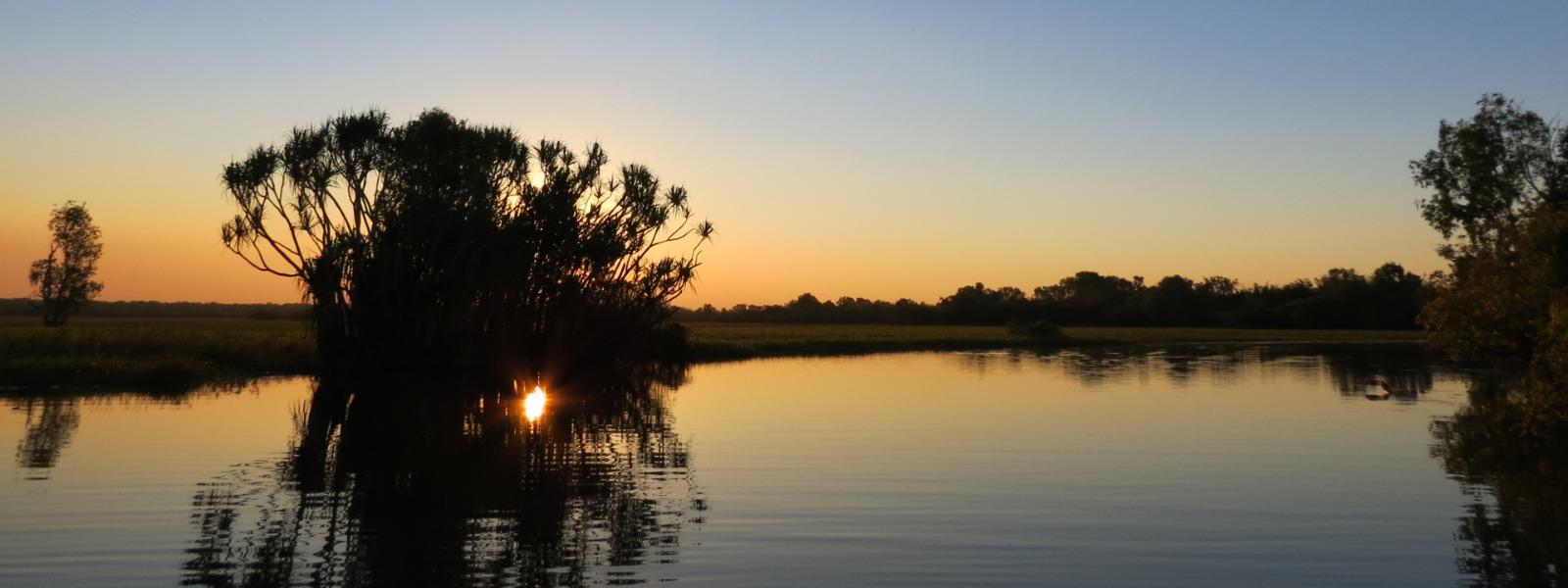 Sugar cane fields in northern Queensland