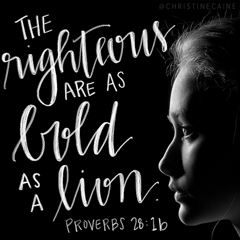 The righteous are as bold as a lion. Proverbs 28:1b